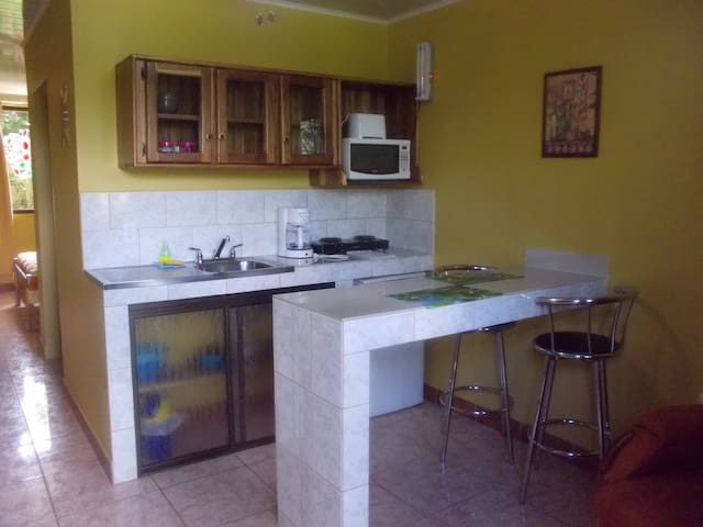 1 bdrm Apart x 2 guests, KITCHEN ,A/C, WI-FI - La Fortuna, Costa Rica - Apartment