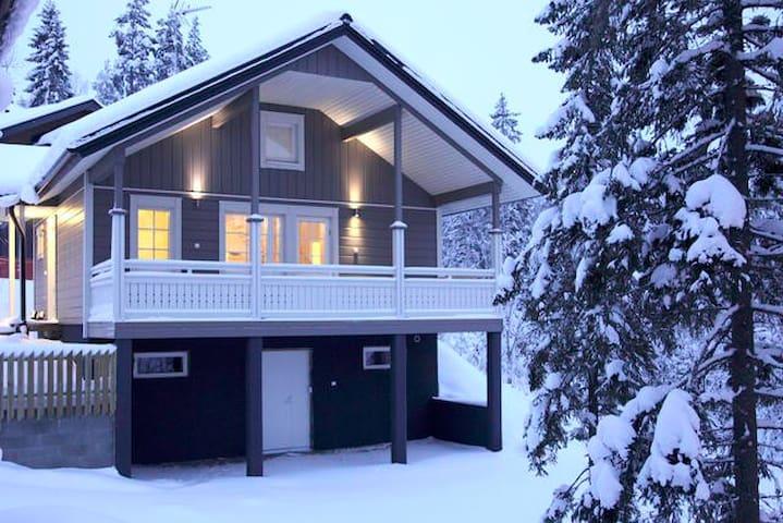 Villa Sidori 1 - Jämsä - Huis