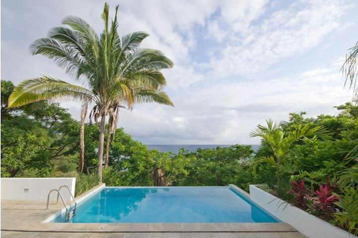 Ocean Views in a Treehouse Loft + Infinity Pool!
