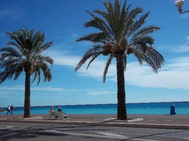 A 5 minutes de la Promenade des Anglais