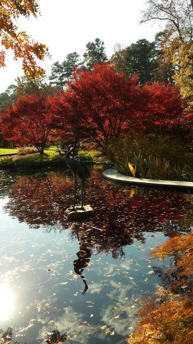 Sarah Duke Gardens, Duke University