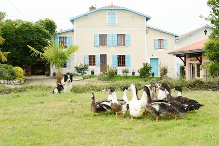 Appartement typique au cœur d'une ferme familiale - Caupenne - Huoneisto