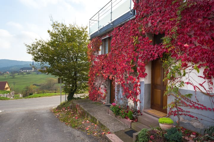 "Gîte ""Chez Line'´ - Thannenkirch - Apartmen"