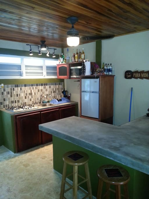 Kitchen with poured concrete counters.