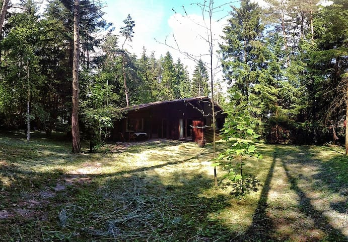 Cozy cabin in the woods - Emmingen-Liptingen - Hytte
