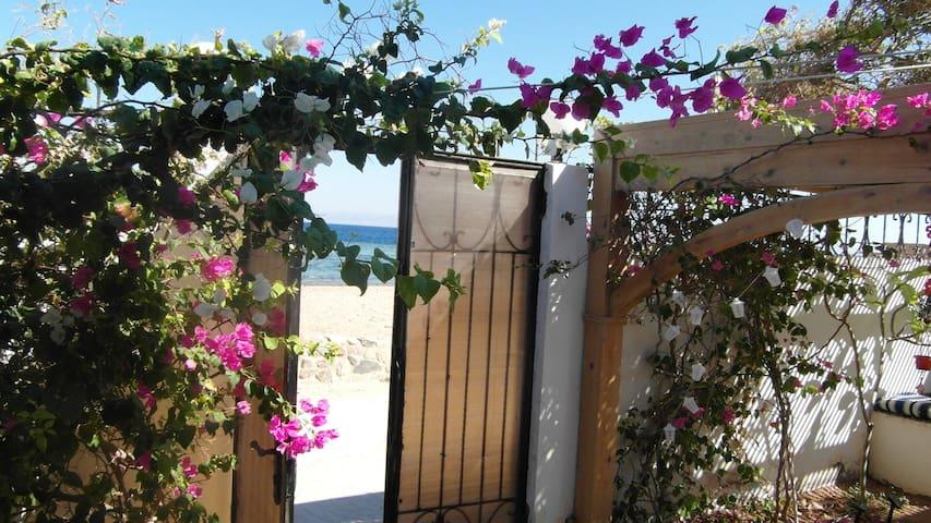 Beachvilla with private beach
