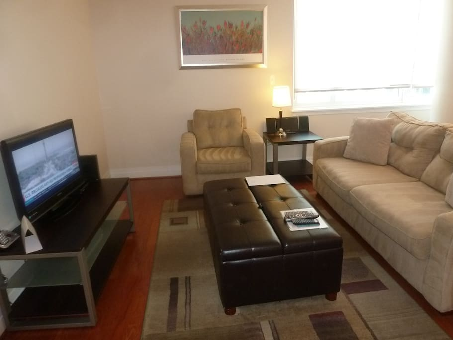 Comfortable living room with pullout sofa bed, club chair and entertainment center