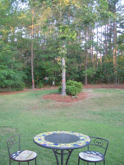 Quiet Backyard