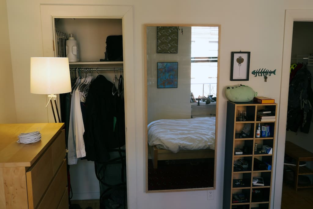 The closet, empty for guests. Large mirror.