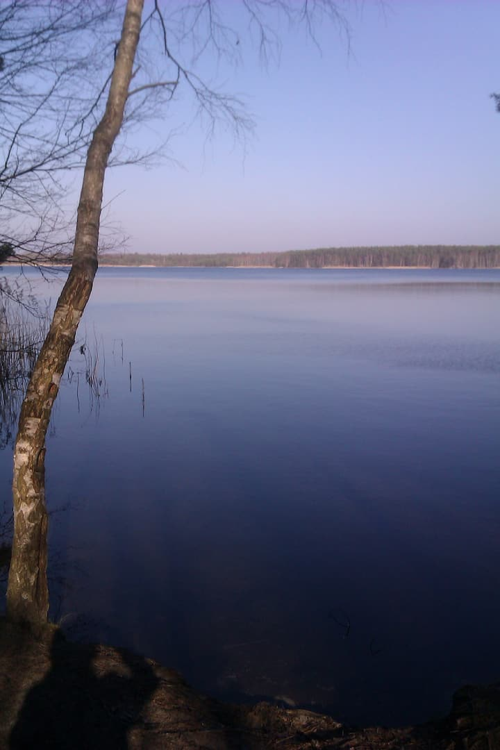 Im Herzen des Lausitzer Seenland