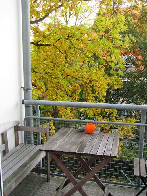 Balcony with view into an old oak tree