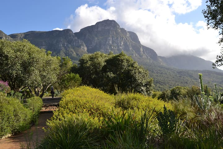 Kirstenbosch Forest Lodge - Upper Newlands