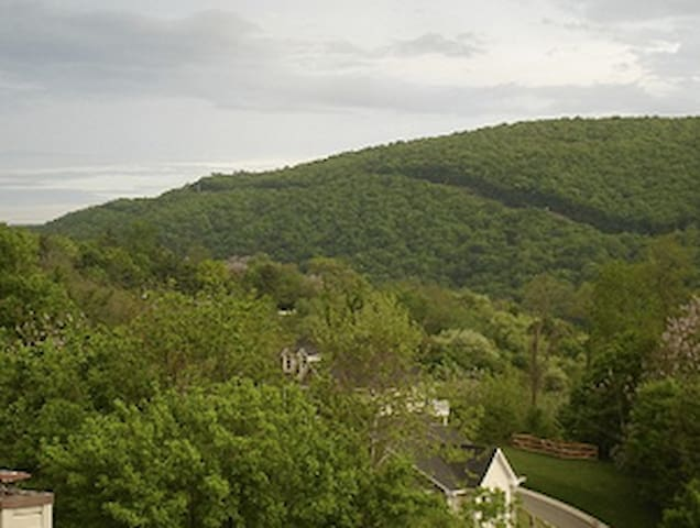 View of Loudoun Heights from loft bedroom.
