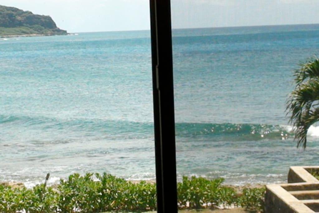 Ocean views from Bamboo Studio!