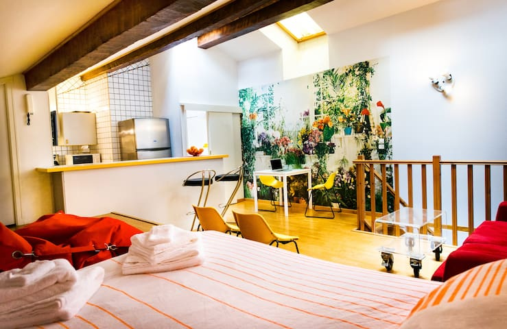 Downtown Modern Studio near Collioure (WIFI incl)