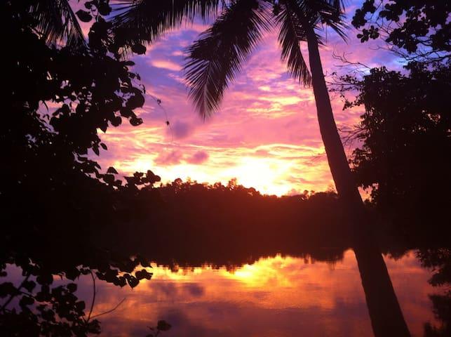 The stunning lagoon, great for nature spotting in Hikkaduwa