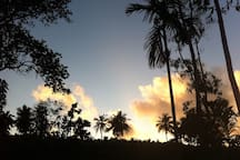 Sunset over the cinnamon field opposite, usually along with monkeys jumping over-head!