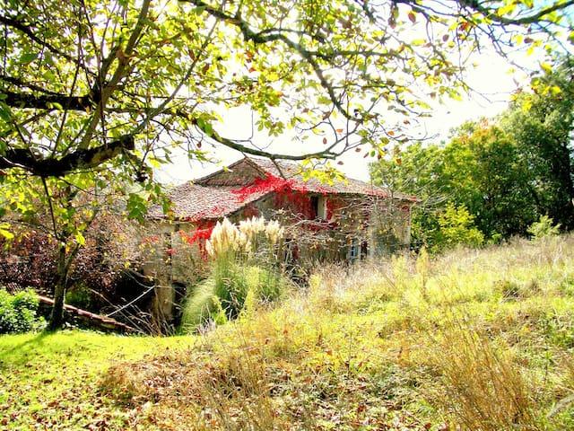 Barefoot Cottage. - Saint-Sulpice-de-Roumagnac - Rumah