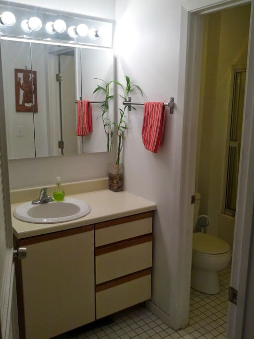 Full bathroom with free washer and dryer.