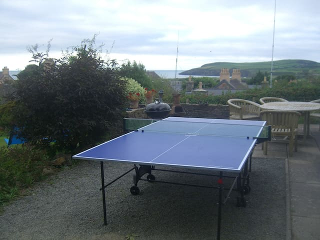 Table tennis table available during summer months