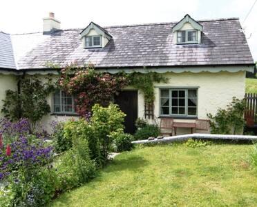Parc y Brenin   - Dryslwyn - Casa
