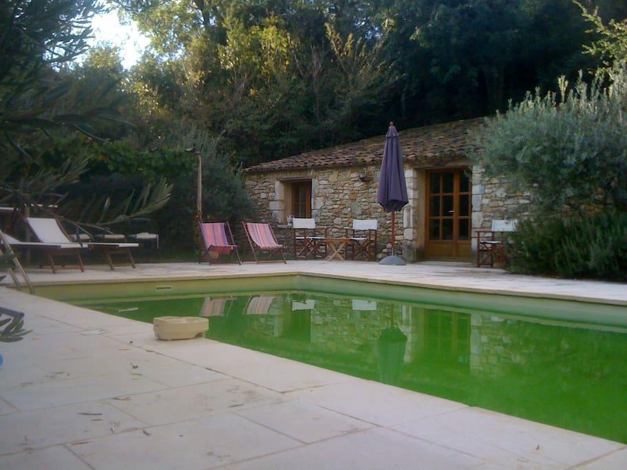 piscine, appartment pool house