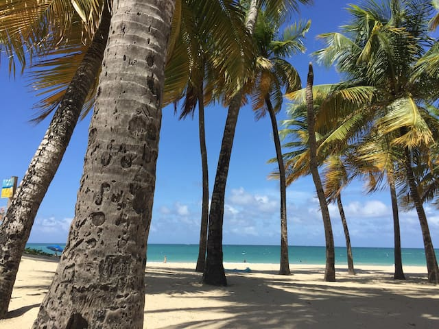 Idyllic Escape ON BEACH + Balcony, Pool, Doorman - Isla Verde - Apto. en complejo residencial