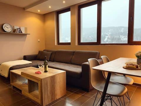 Kopaonik apartment with beautiful view