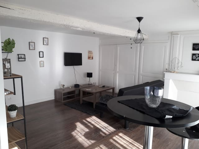 Appartement Cocooning  Coeur de Chalons