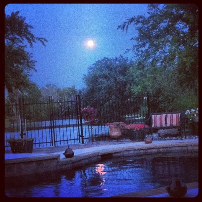 Enjoy the beautiful moon over the pond each evening.