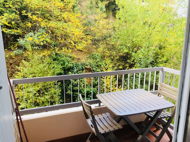 Studio avec balcon à 2 pas des cures et rivière.
