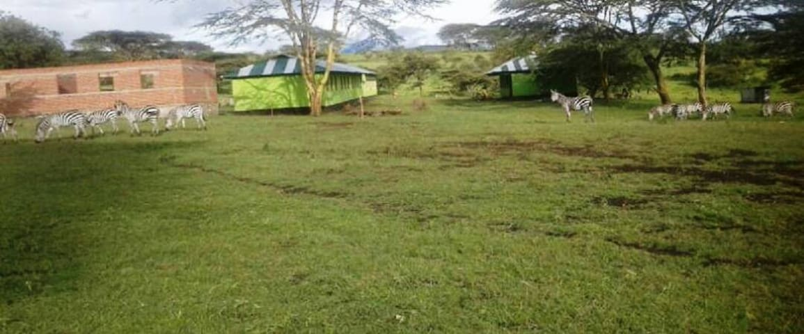 Hostel Ebeneza-Ngorongoro