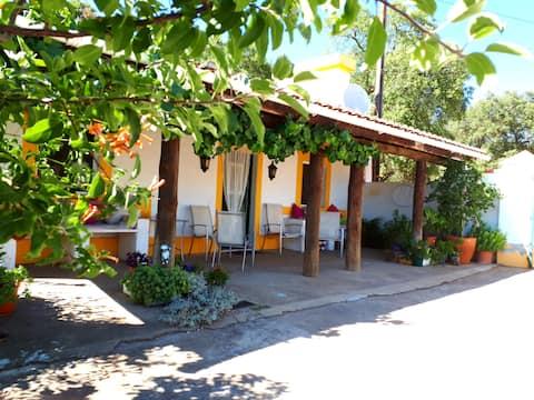 The Alentejo--undiscovered Portugal