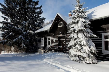 Cosy Mountain Cottage in Jizera mountains - Desná - Σαλέ