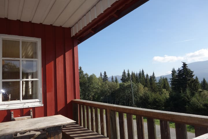 Mountain cabin  - Hjartdal - Cabin