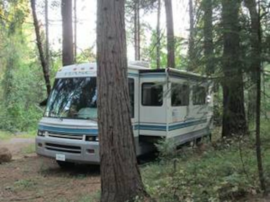 RV in the forest with pop out