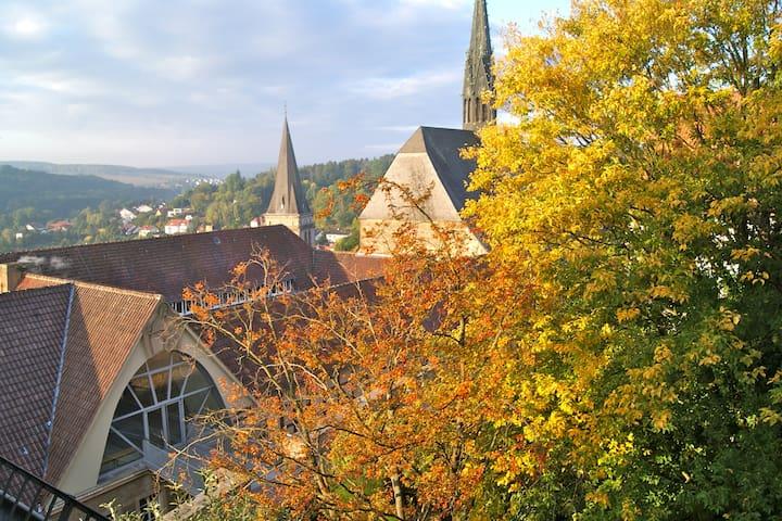 Ferienwohnung mit Weitsicht  - Warburg - Daire