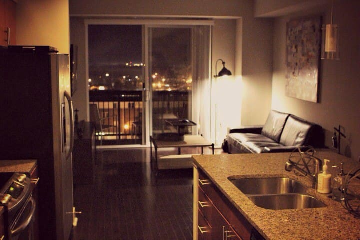 Luxury Downtown Suite