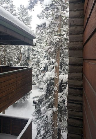 Looking down from the CONDO entry deck to the path from the parking area (Nov 2014).