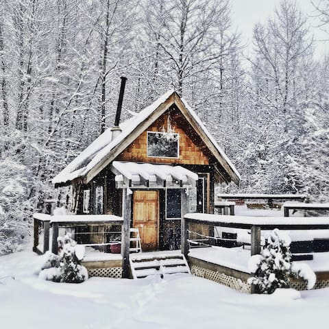 Private Cabin close to Whistler - Pemberton - Cabin
