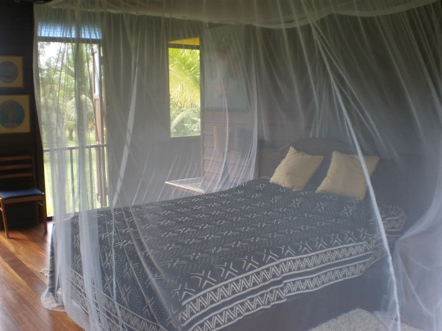 Bedroom with ceiling fan and mosquito net