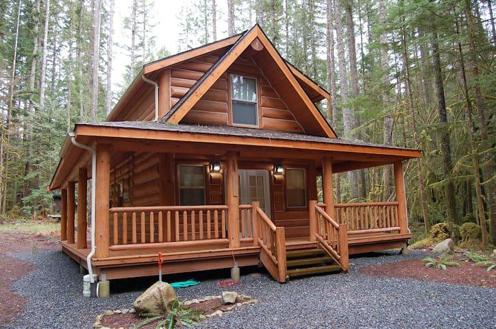 Beautiful Log Cabin near Mt. Baker. 2 Bd/1.5 Bath