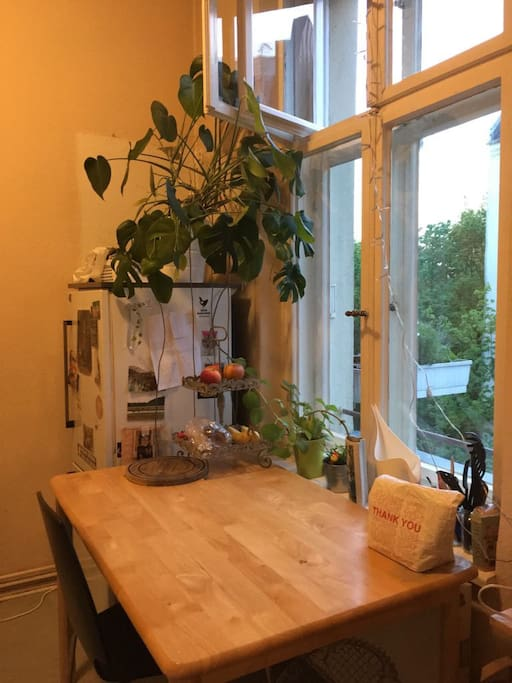 Jungle in the kitchen