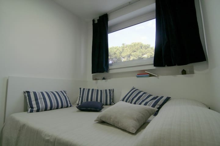 Cabin in Castel Gandolfo - Albano Laziale - Outro