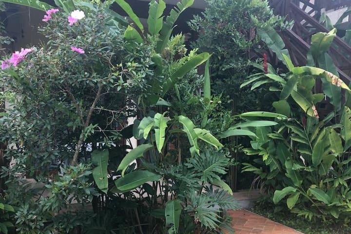 Entrada para o apartamento em zoom: a bela vegetação também garante a privacidade de varanda da frente