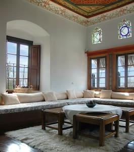 18th-century mansion (single room) - Vizítsa - Bed & Breakfast