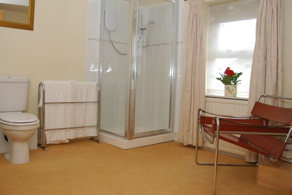 Good size bathroom with shower and toiletries.