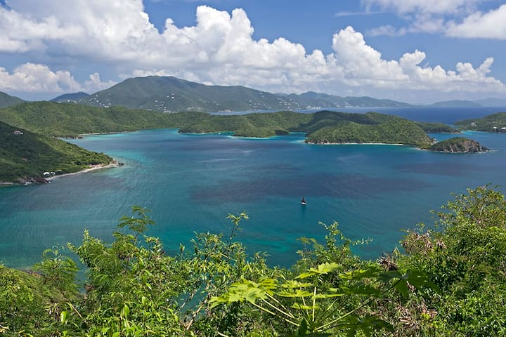 Your view of Virgin Islands Coral Reef National Monument -- pristine beauty.