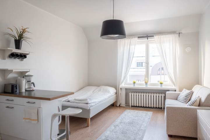 Bright Penthouse Studio Close to the City Center