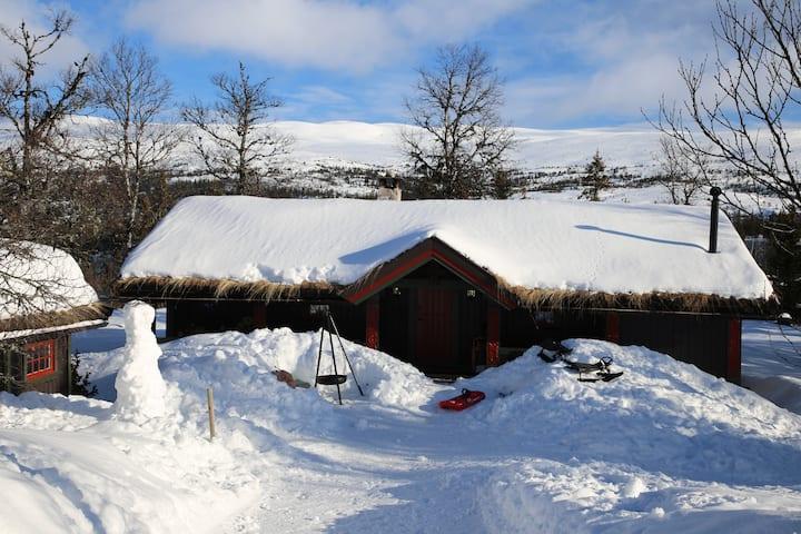 Koselig familiehytte kun 2-2,5 timer fra Oslo